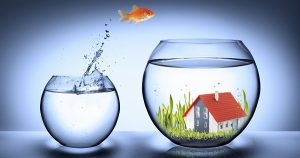 goldfish jump in fishbowl with house - real estate concept